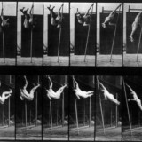 muybridge3