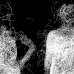 Mycelium [Processing]