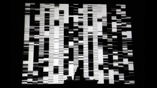 Ryoji Ikeda1