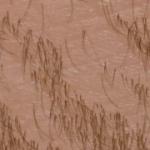 Hairrrr [Mac, Cinder]