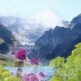 paysages12