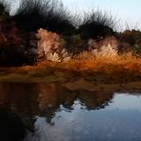 paysages14