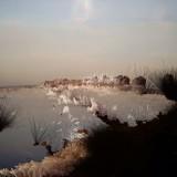 paysages17