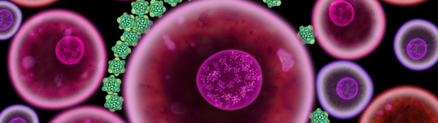 Biophilia-screenshot-iPad-Virus-release-2-04xx