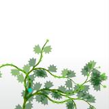 flowerium03