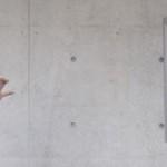 Apesnake Photobooth [openFrameworks]