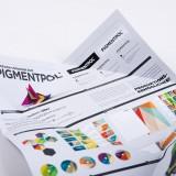 pigmentpol_10
