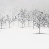 This Exquisite Forest &#8211; Project by Aaron Koblin and Chris Milk