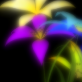 &#8220;Hana&#8221; by Andreas Mller allows iOS devices to dream about flowers