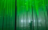 &#8216;Forest&#8217; &#8211; Musical forest by Marshmallow Laser Feast for STRP Biennale