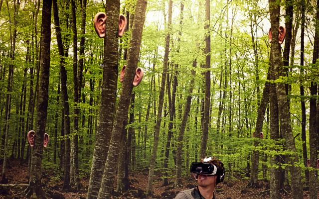 sonard-VR-tress
