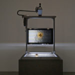 Delineation & Decay – Laleh Mehran's Entropic System