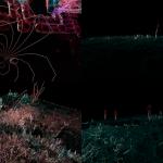 New Digital Landscapes [Cinder, Kinect]