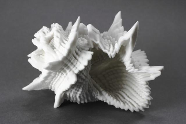 img_0790_seashells_2400px