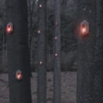 Pixi – Nature aware, self-sufficient, digital organism 'breathes' in the forest