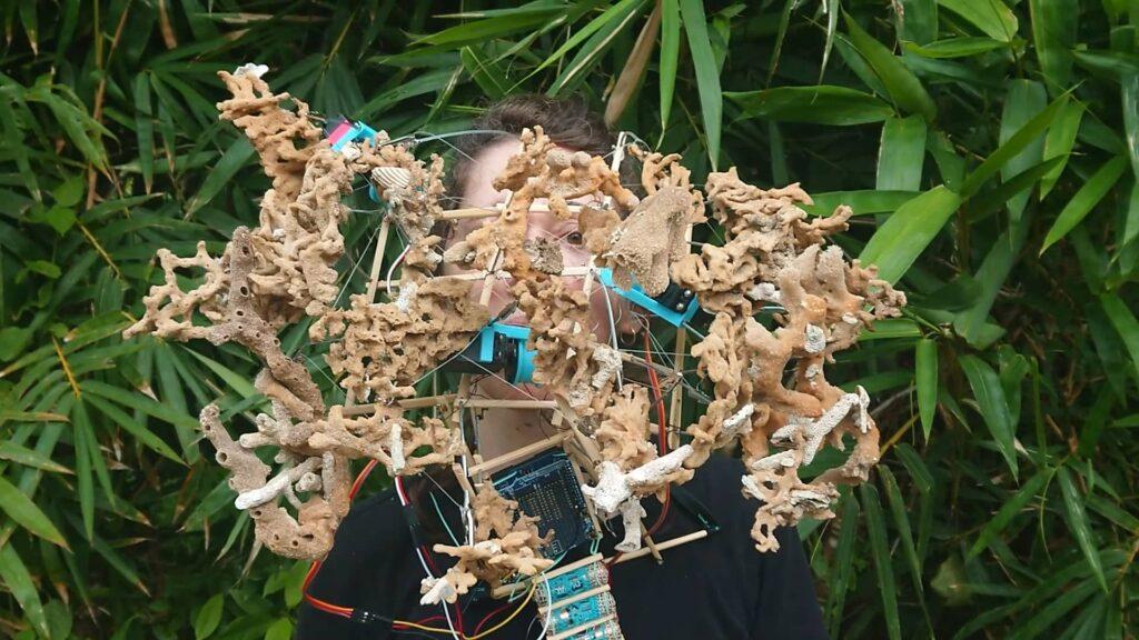 Face Nature – Future of the head and sensory apparatus