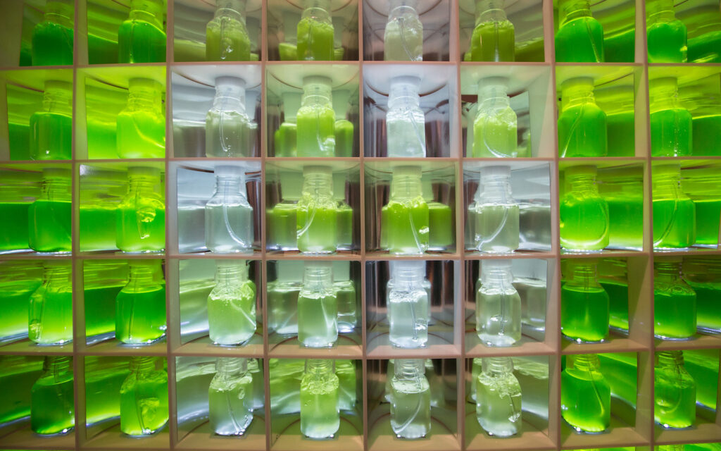 Algae Bio-Reactor – Visualizing Data with Algae