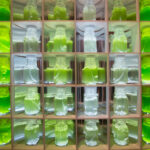 Algae Bio-Reactor – Visualizing Data with Algae