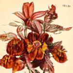 XXI Century Herbario Novo – Artificial Botany by fuse*